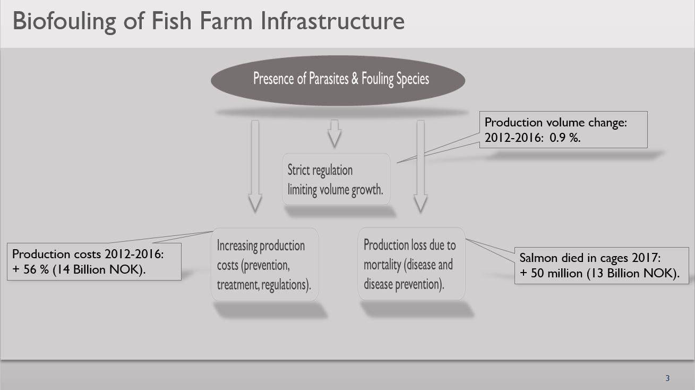 Virkningen av biofouling på ulike aspekter av akvakulturindustrien. (Kilde: Bravo Marine AS)