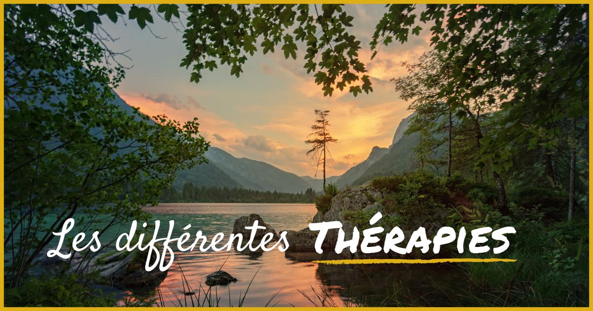 FB - Les différentes thérapies.png