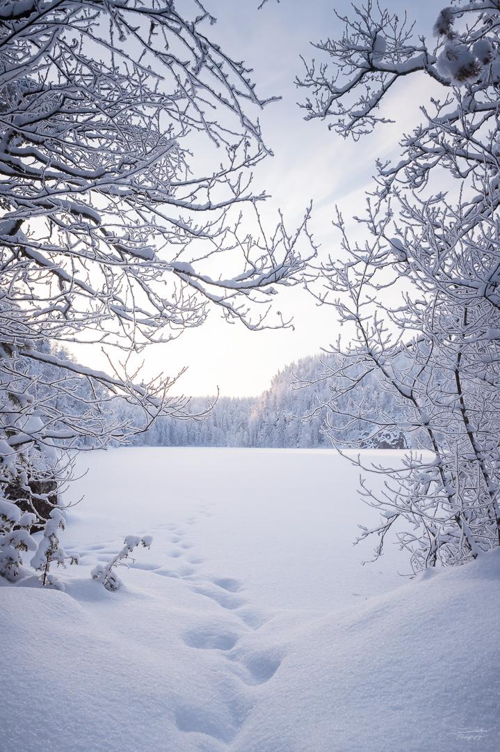 Southern Konnevesi National Park-3.jpg