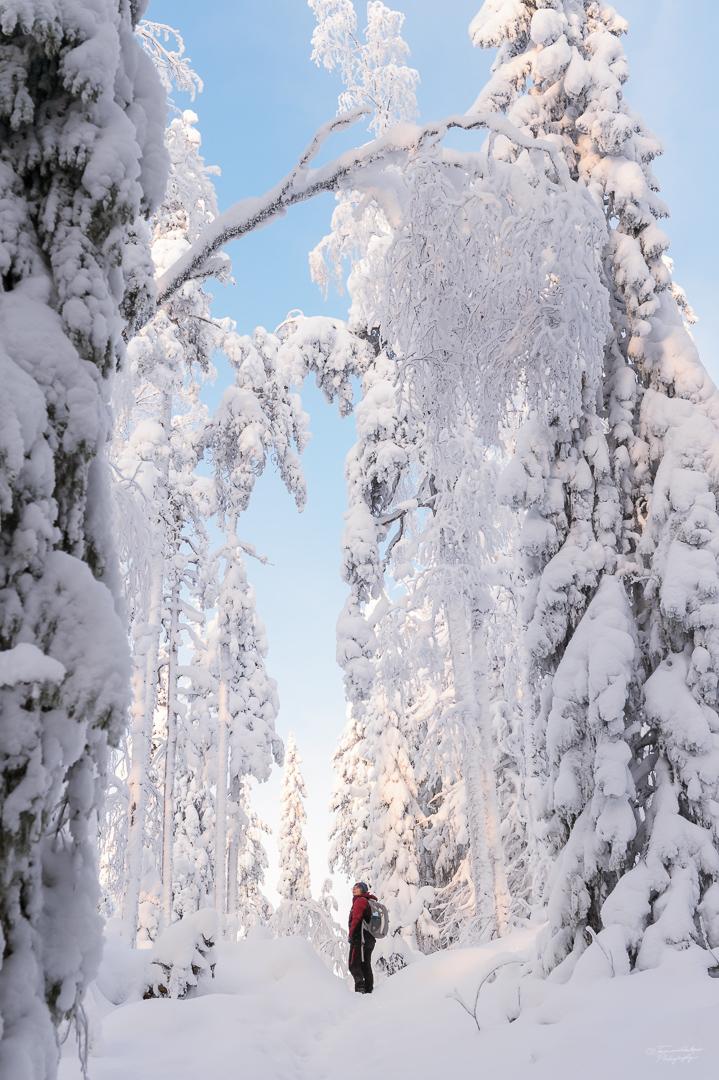 Southern Konnevesi National Park-7.jpg