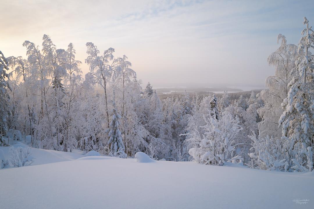 Southern Konnevesi National Park-19.jpg