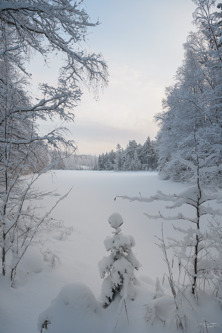 Southern Konnevesi National Park-30.jpg