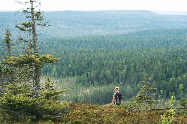 Hiking Riisitunturi National Park, Finland. #finnishparks #ulkonaperillä #365klubi #discoverfinland #OspreyPacks  #suomenlatu #ulkoilu #retkipaikka #outdoorfinland #luontoonfi #VisitFinland #hiking #nationalparks