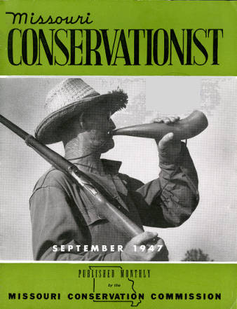 conservationist.jpeg