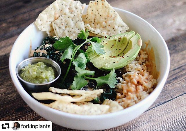 Had to #repost this beautiful bowl made by @forkinplants with @mesasalsa 🙌😋 ・・・ . When your boyfriend asks you to recreate the Locals Bowl from @seabirdskitchen, you work your magic! ⠀⠀ Brown rice, Cuban black beans, braised kale, chipotle crema, cilantro, avocado, green salsa (because that's all we had), and some tortilla chips. ⠀⠀ Wasn't aaaaas good as the locals bowl, but still pretty tasty! ⠀⠀ Ps when does the Los Feliz location open?! I'm looking at you, Steph 👀