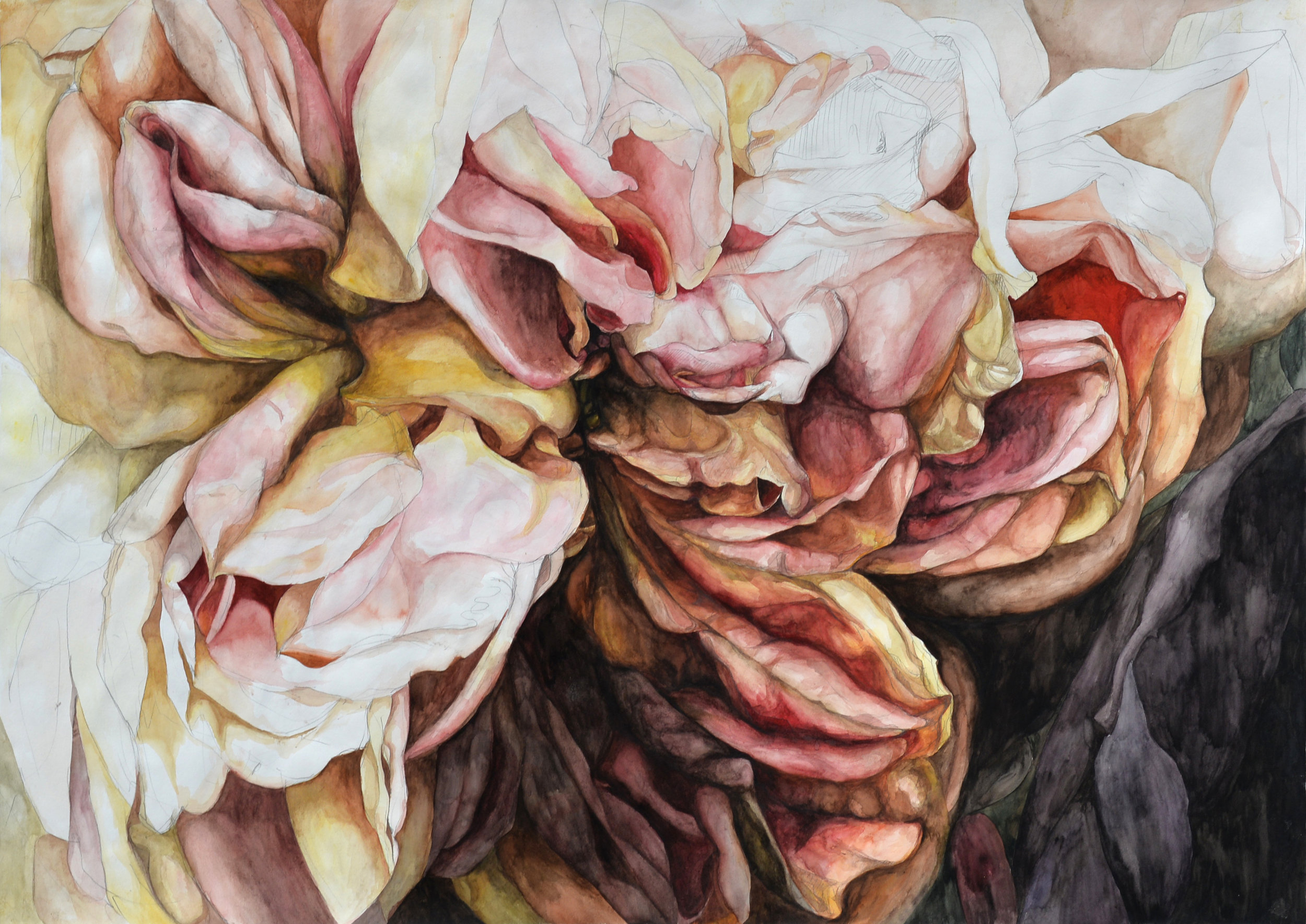 """Flowers No. 7 , watercolor and pencil on paper, 32""""x 48"""" (2016)"""