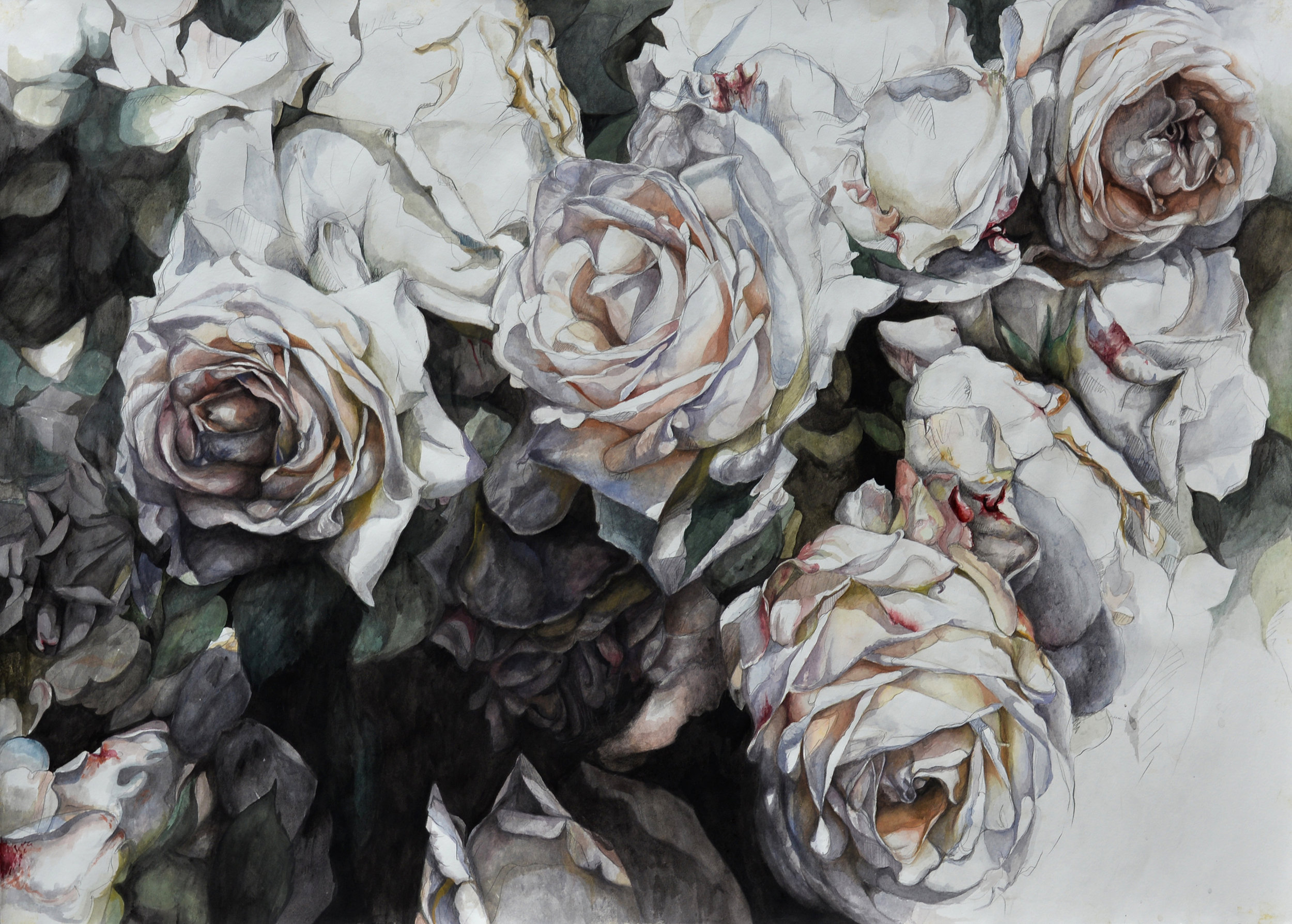 """Flowers No. 6 , watercolor and pencil on paper, 32"""" x 48"""" (2016)"""