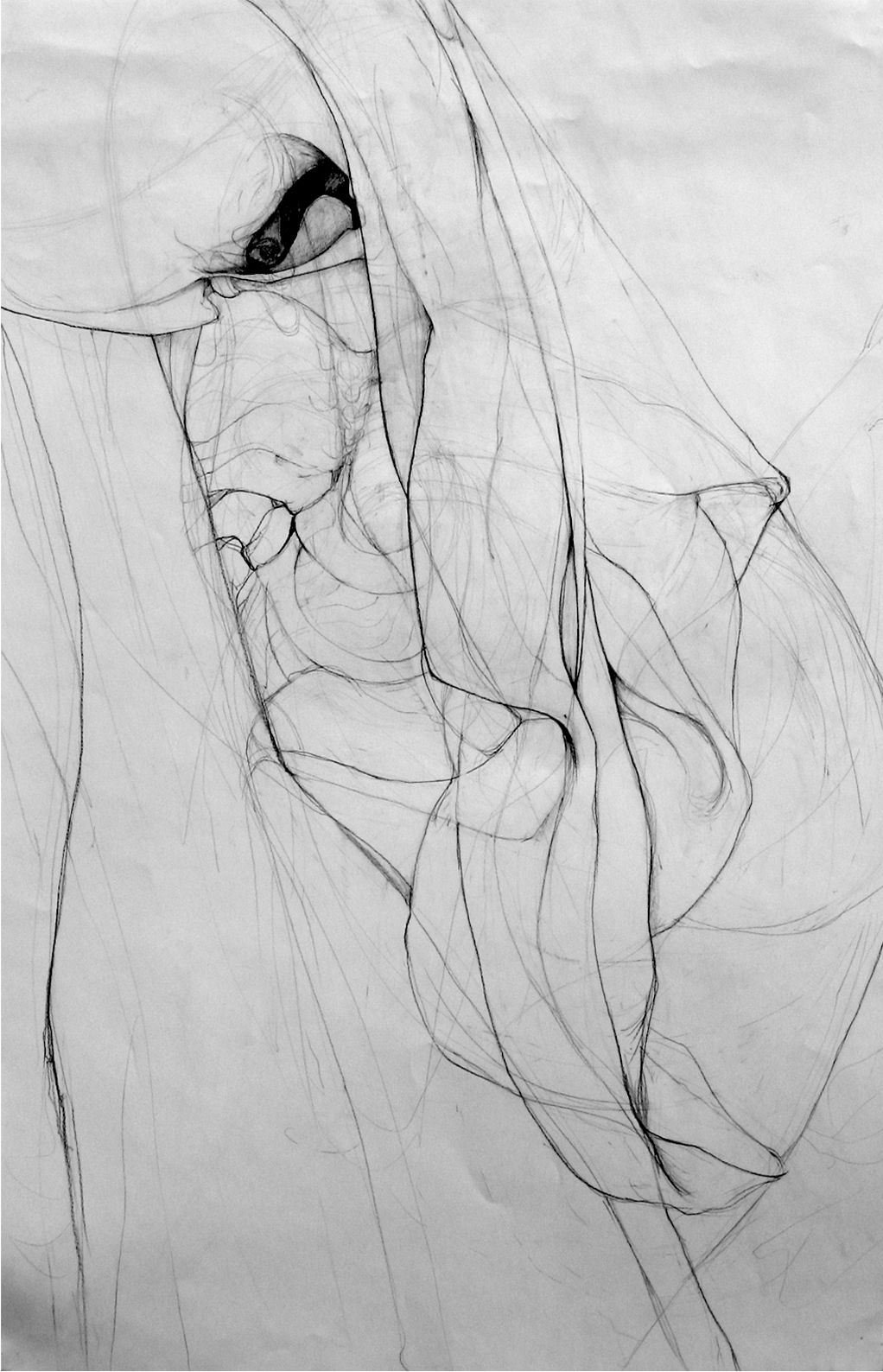 "Fabric and Skeleton II , pencil on paper, done as part of Sue Ferguson Gussow's  Advanced Drawing for Architects  course at The Cooper Union, 24"" x 36"" (2007)"