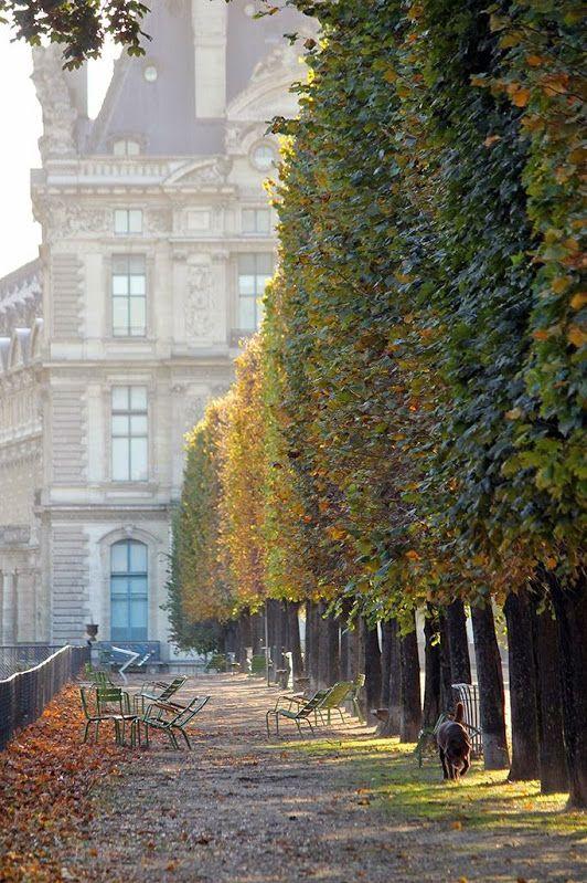 Paris Tullieries Gardens Fall.jpg