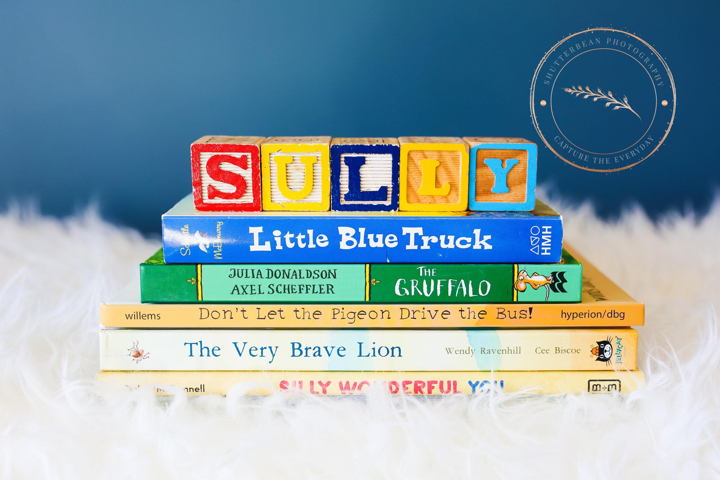 BabySully-16-6.jpg