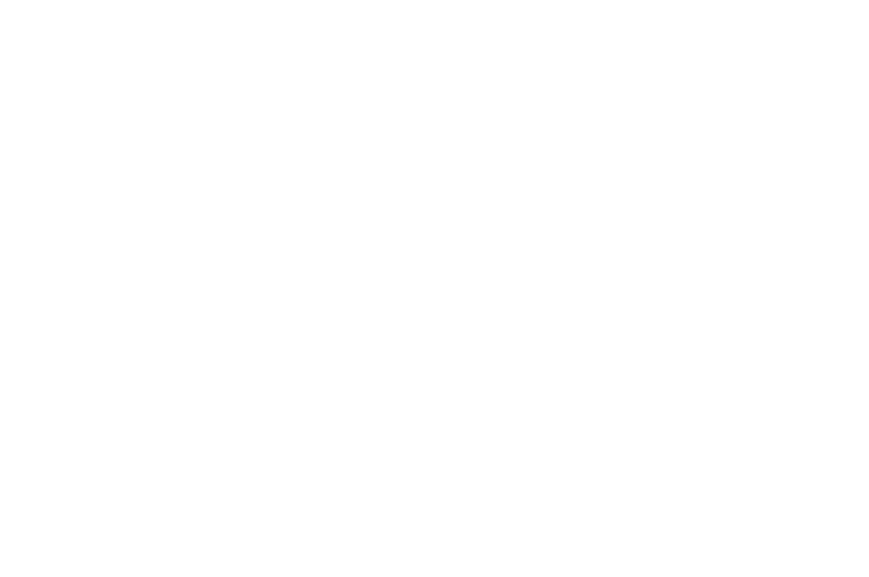 WINNER - BEST TV PILOT HOBOKEN INTERNATIONAL FILM FEST. - 2019-2.png