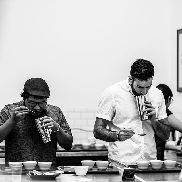Earlier this month, @interamericancoffee has organized a mini cup tasters preliminary. It was a great event for competitors and community members to get a taste of the Cup Tasters Preliminary later this month.  On Sept 28, Houston Coffee Collective and InterAmerican Coffee will be jointly hosting the Houston Cup Tasters Preliminary at @interamericancoffee. Sponsored by @boomtowncoffee, a $700 stipend will be rewarded to the champion of this competition to support their trip to the Qualifiers.  Come join this fun event and the pre and post events. View our events schedule on the website! #houston #competitions #cuptasters #uscoffeechamps2020  Photo by @layman_rob
