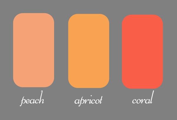 Coral+vs.+Peach.jpg