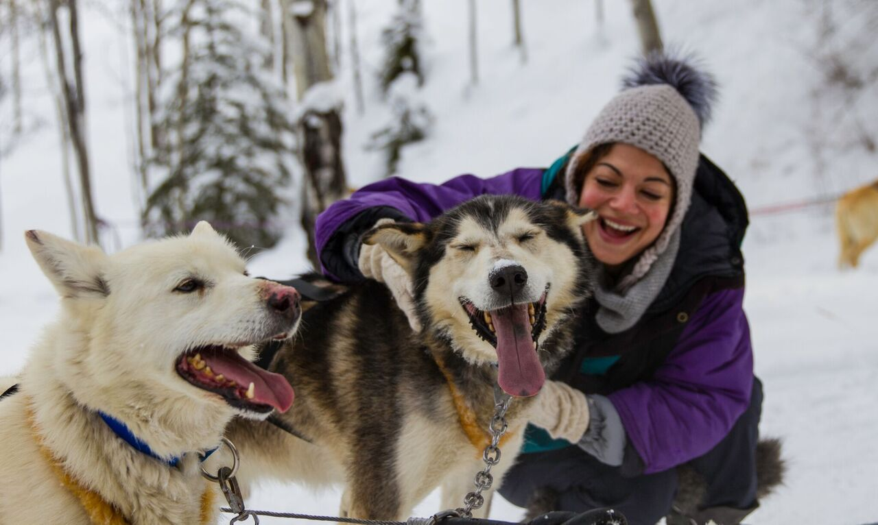 WinterDogSledding (1).jpg