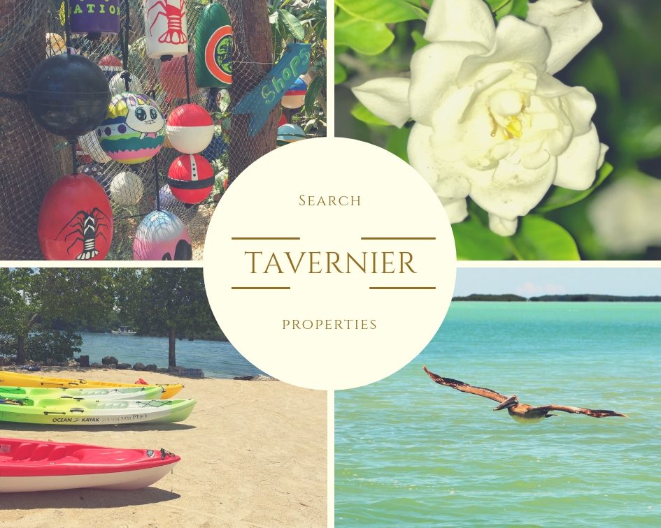 Tavernier   Click the following link or on the picture above to preview properties currently listed for sale in the Old Tavernier area (33070 Zip Code)    CLICK HERE