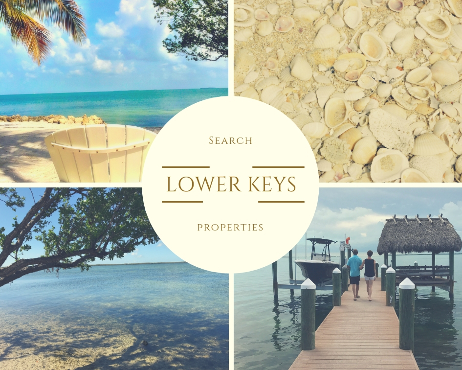 Lower Keys   Click the following link or the picture above to preview properties currently listed for sale in the Lower Keys area.   CLICK HERE