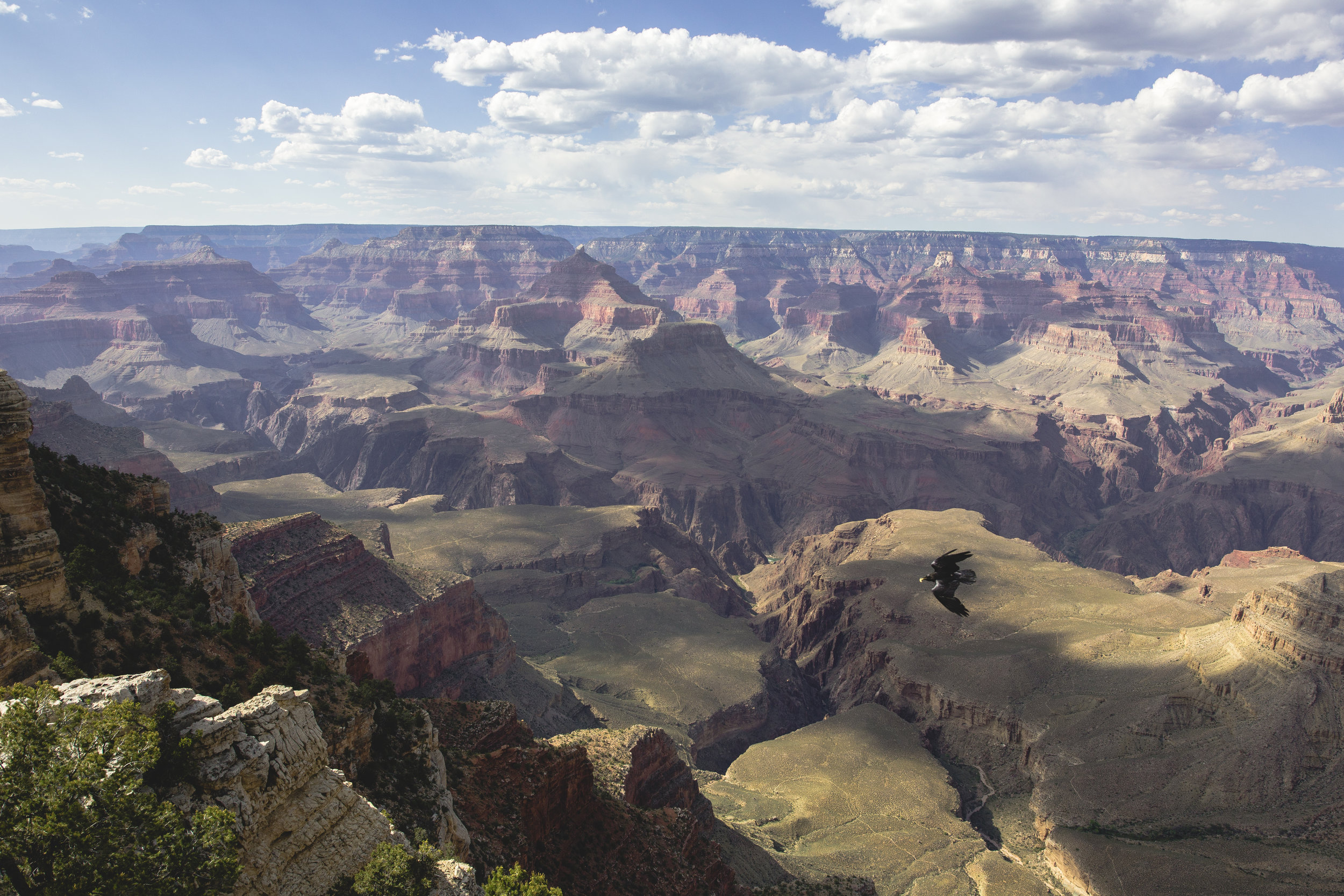 The Grand Canyon-25.jpg
