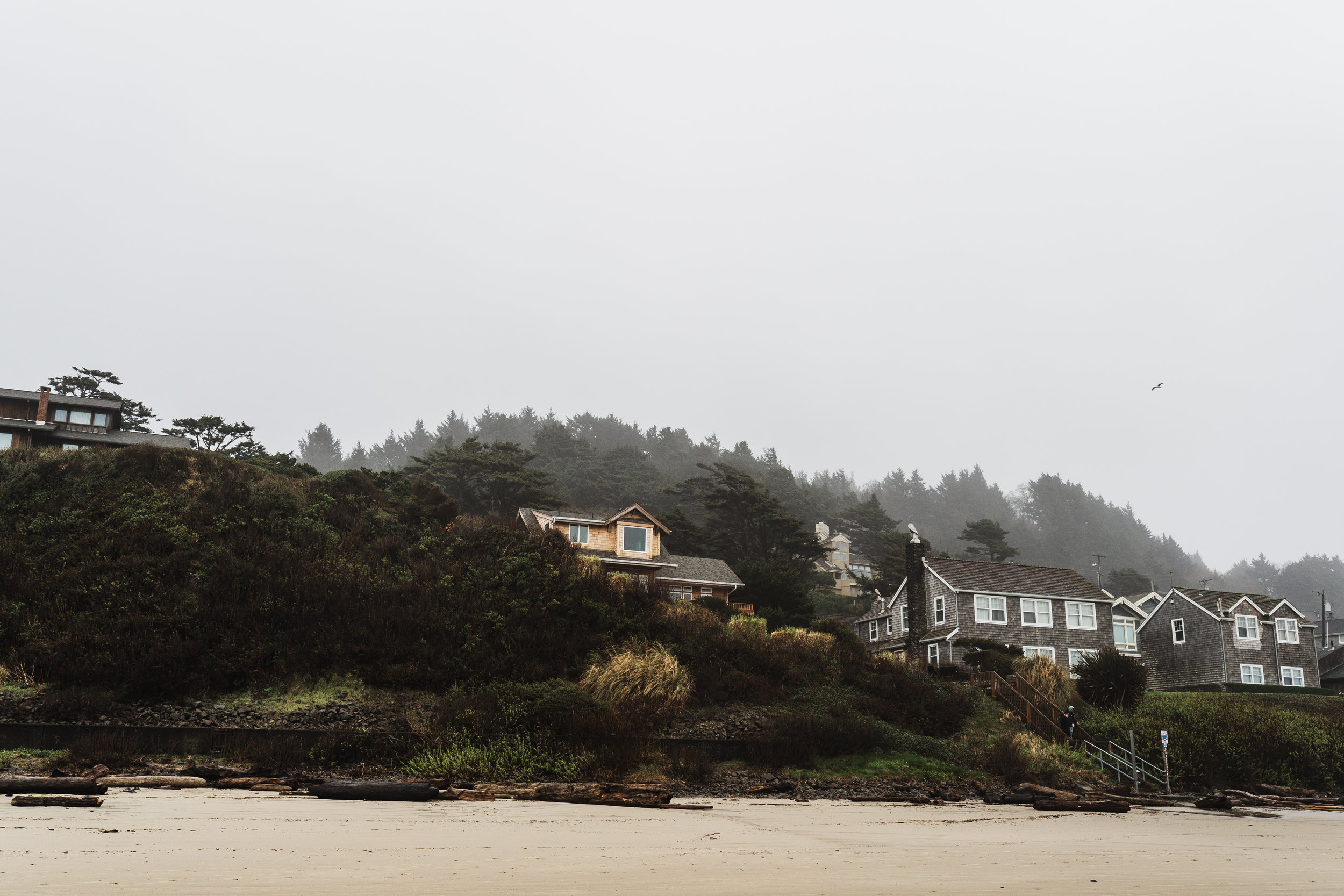 Cannon Beach-25.jpg