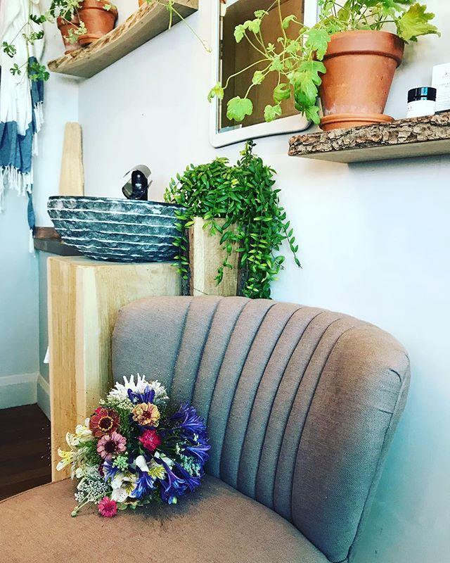 Tuesday flower drop to beautiful @asapoth , such a gorgeous shop its a pleasure to visit  #grownnotflown #flowerdelivery #contractflowers #locallygrownflowers #cutflowers #botanicalpickmeup #botanicallyobsessed #botanicalcosmetics #apothecary #lewesflorist #lewesshops #britishflowers