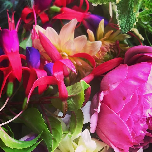 Just to let you know that I'm not @lewes_food_market tomorrow selling #locallygrown flowers as I'm off on holiday but shall be back with more beautiful & hydrated #britishflowers next week 🌺🌞 #floralwonderland #cutflowers #grownnotflown #marketlife #sellingflowers #botanicallyobsessed #lewesflorist