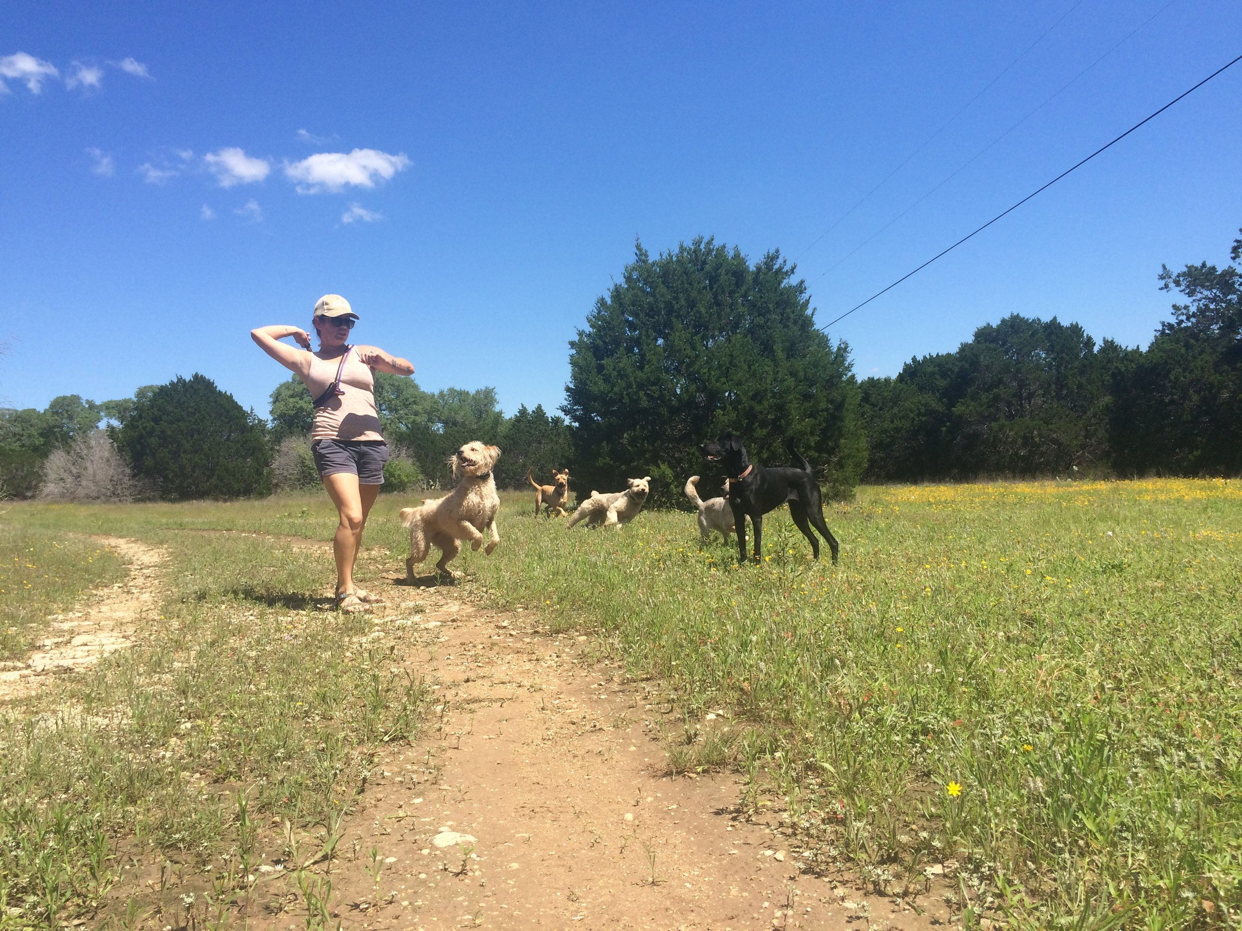 Our own Haley Benardino stepped off the trails and behind her computer to write today's blog on fetch