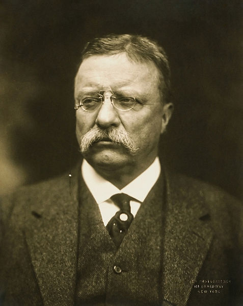"""""""Our Navy is the surest guaranty of peace and the cheapest insurance against war."""" - President Theodore Roosevelt (above), justifying his request to expand the Navy. See """"Plea for Big Navy,""""  Washington Post , February 23, 1905."""