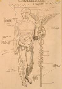 An external representation of the ancient caduceus