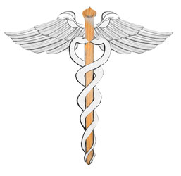The double or binary Hermetic Caduceus –a binary notion of life