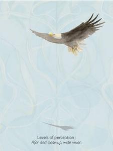 Eagle_soaring.jpg