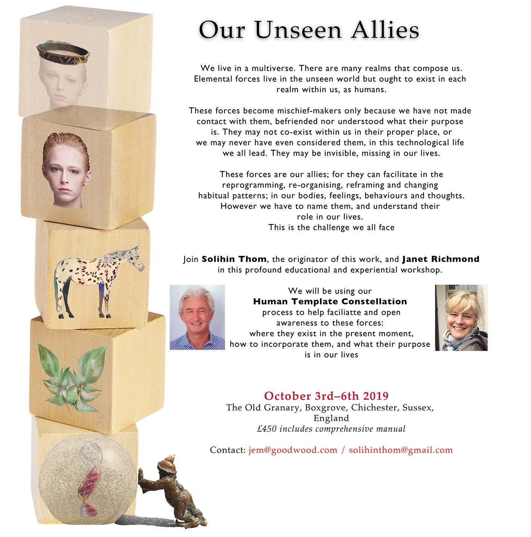 Unseen allies workshop.jpg