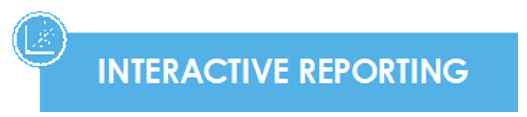 interactive report.PNG