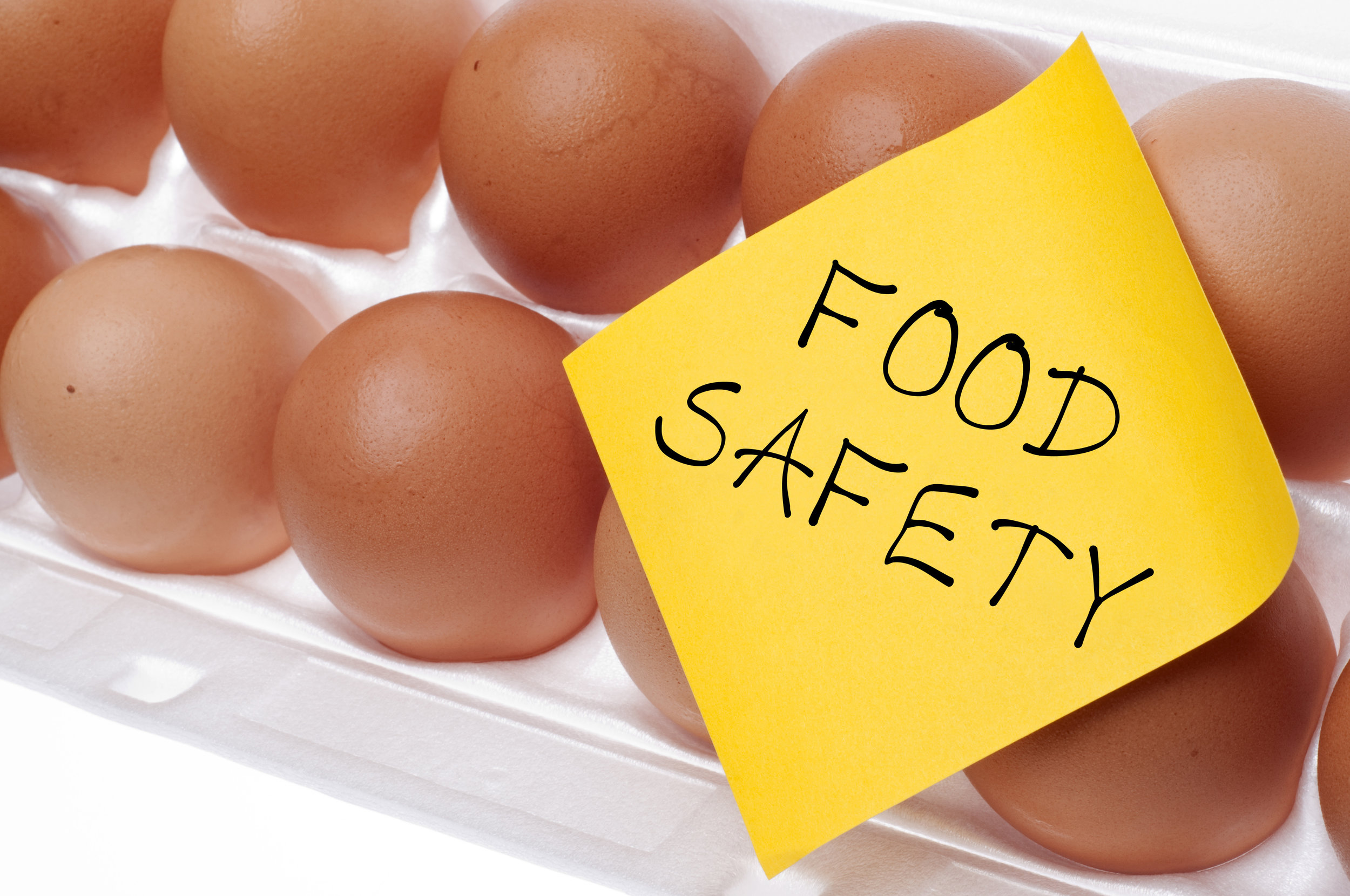 Food Logistics: A Focus on Safety