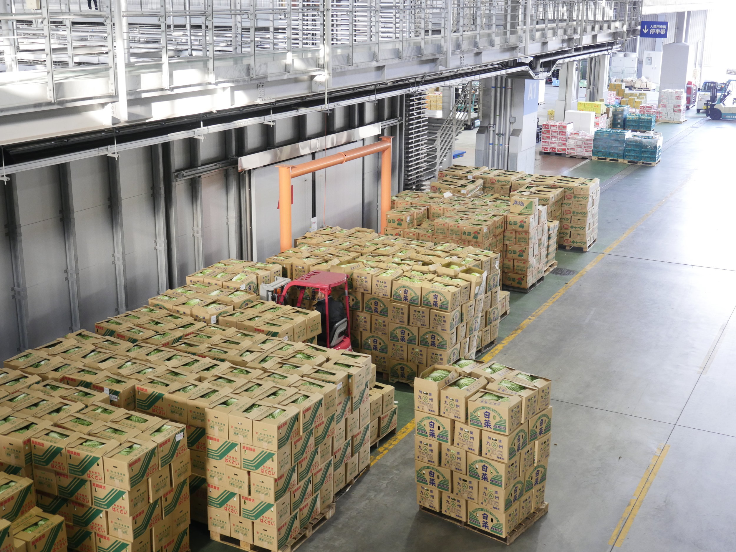 Cold Food Storage Requirements in Logistics