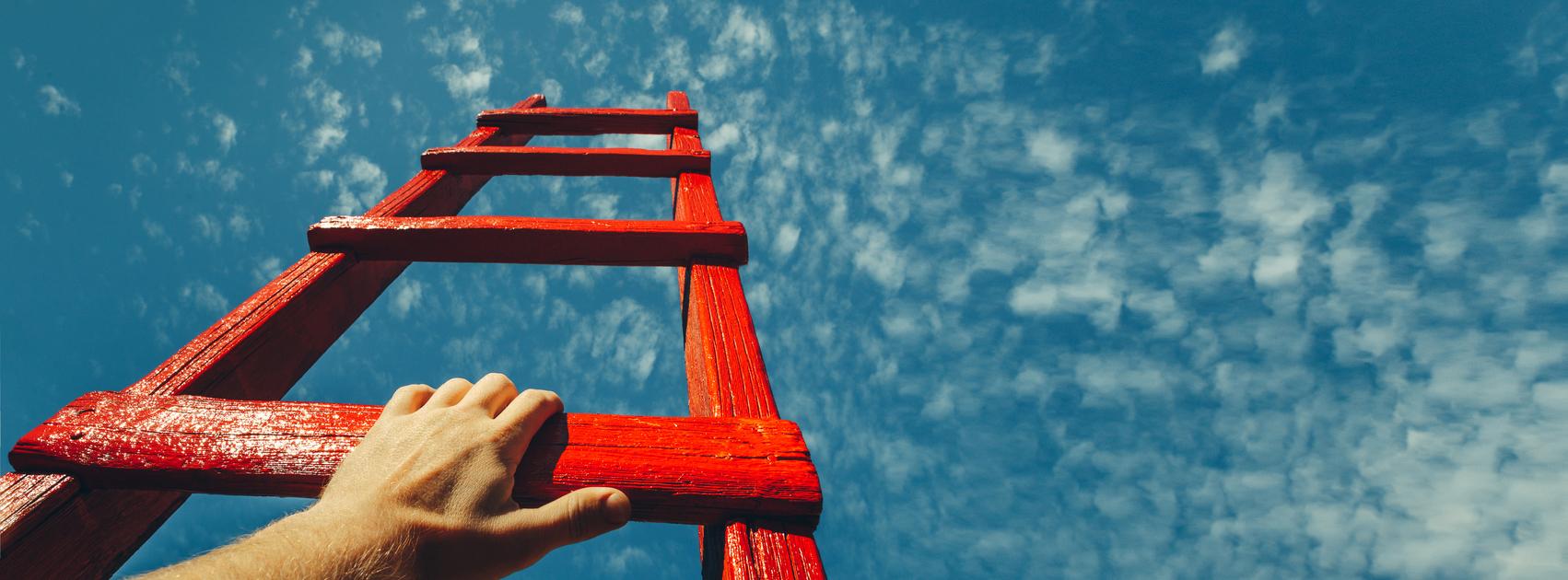 ladder growth smaller.jpg