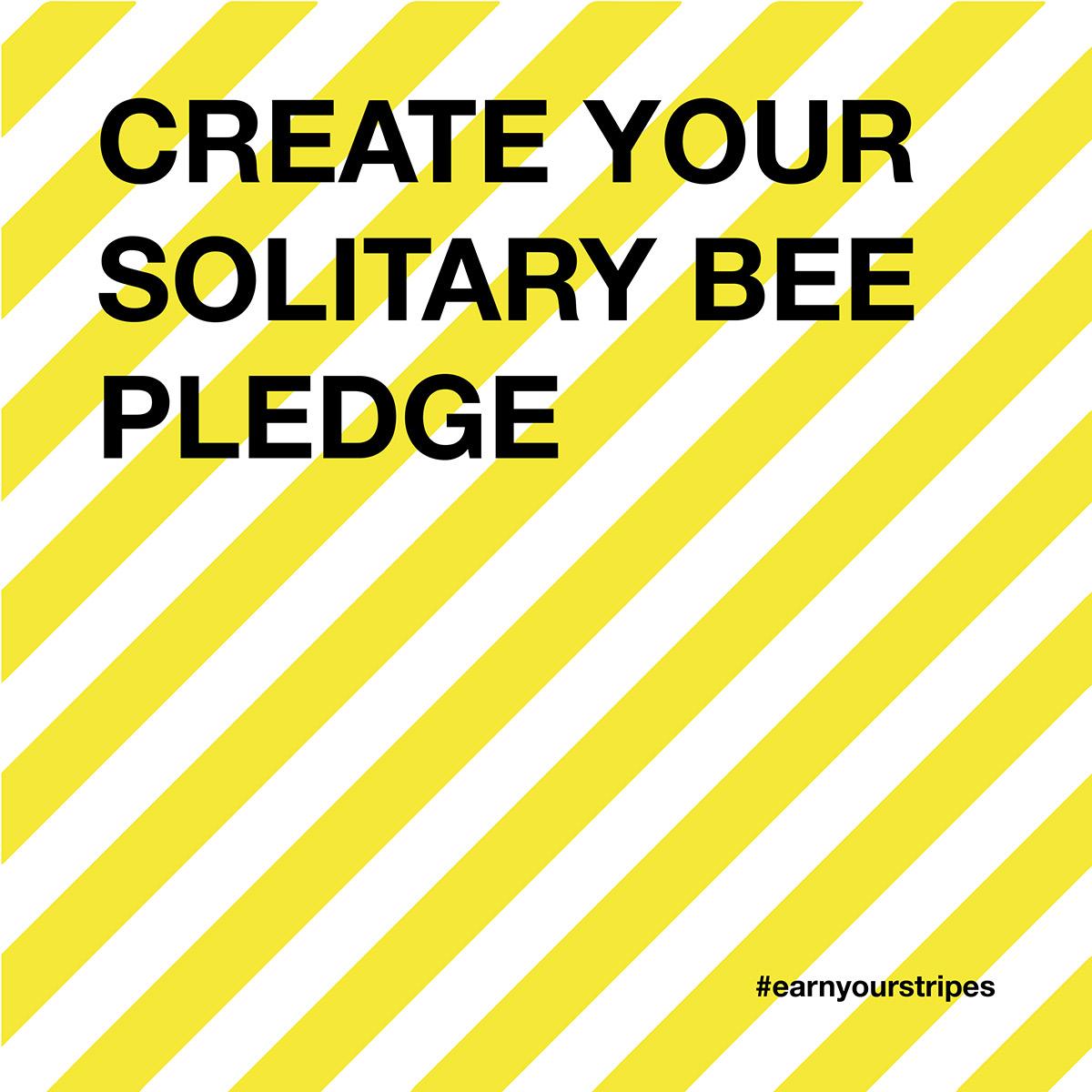 solitary-bee-pledge