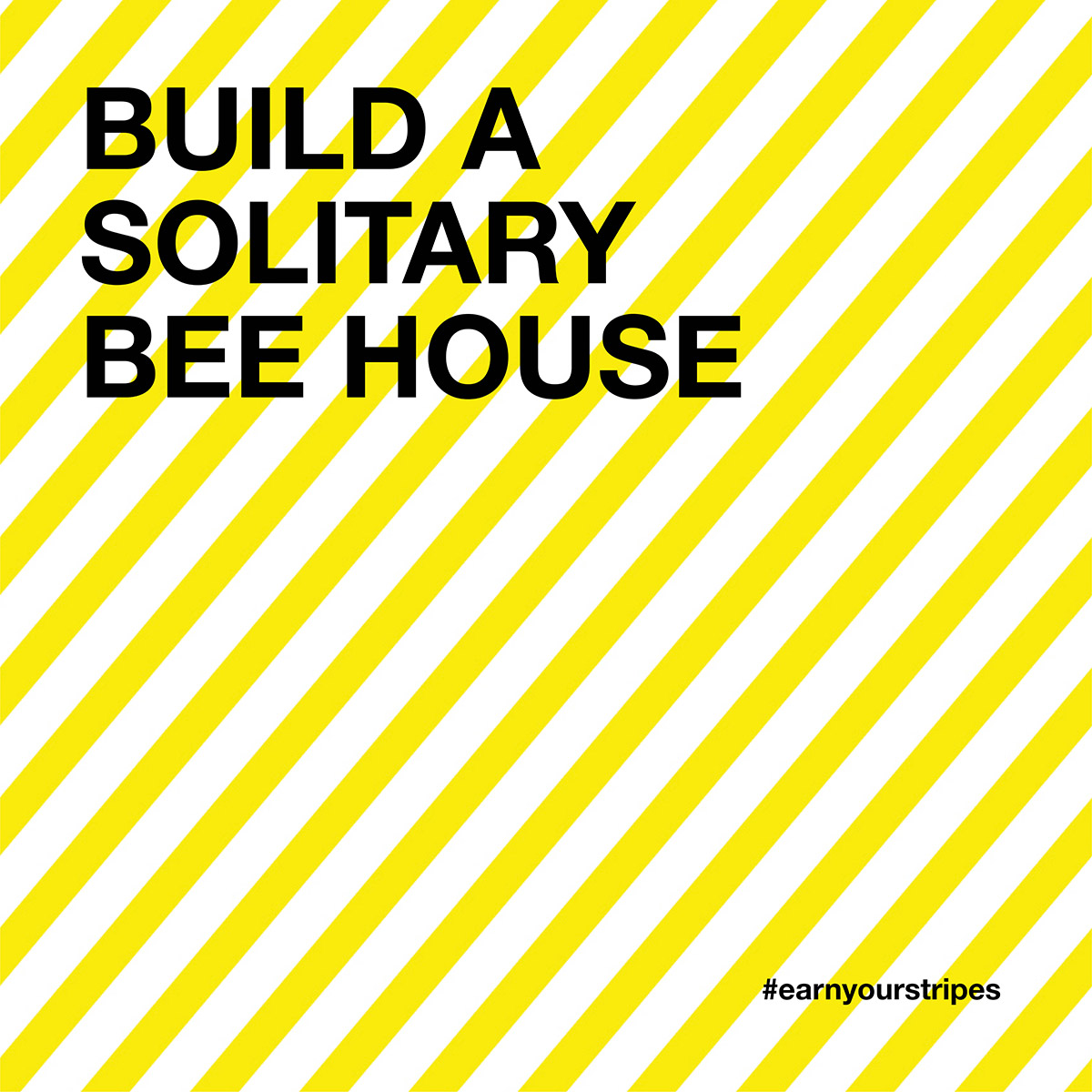 solitary-bee-house