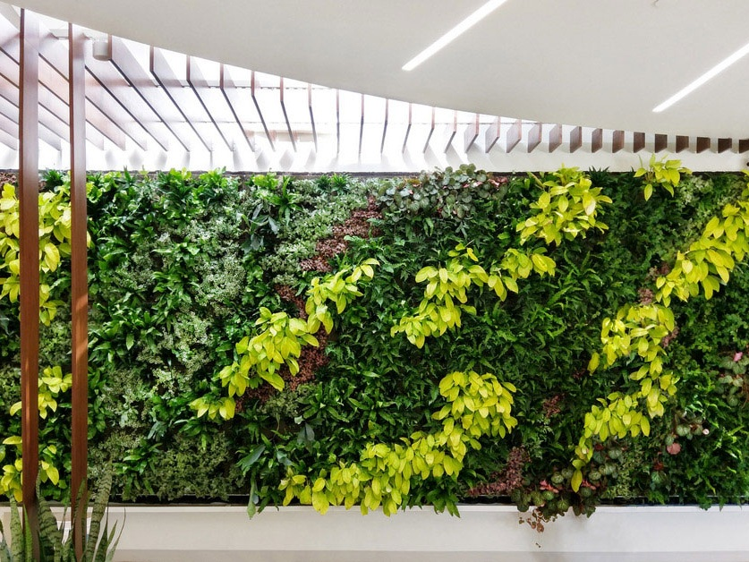 Specifying Green Walls: bringing indoor environments to life - PRISM