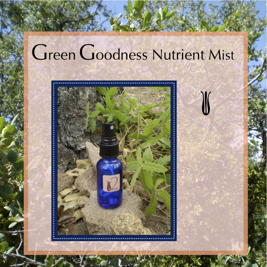 2. Green Goodness Nutrient Mist   Snow Pea Tisane, Lemongrass Essential Oil  (Fresh botanicals - must be refrigerated)   * If you are sensitive to Essential Oils, send me a note with your order and I will create a formula which works for you.