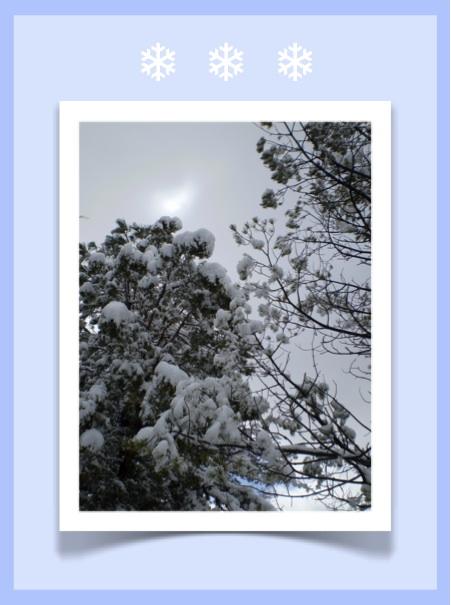 winter-skin-preparation.jpg