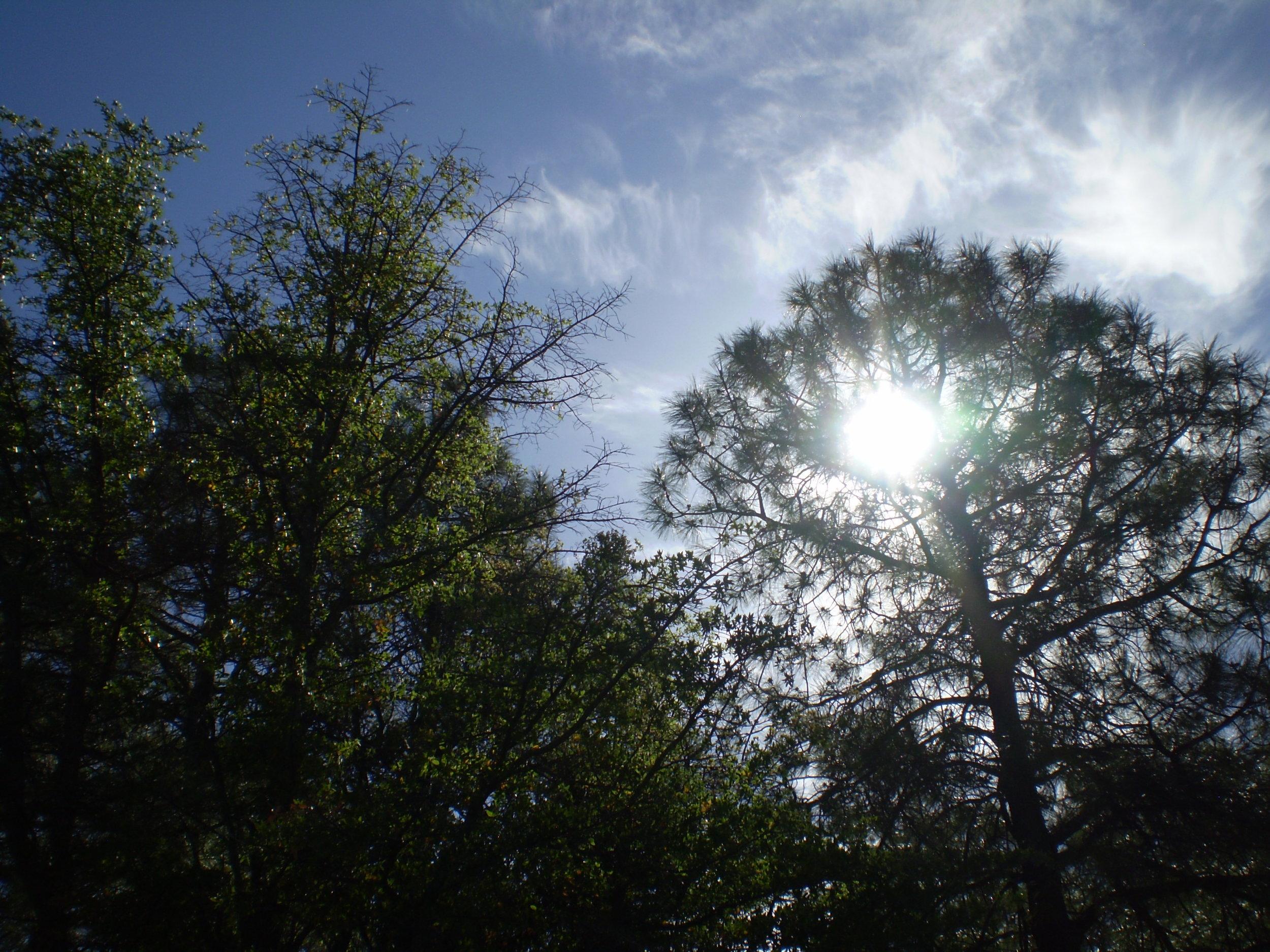 arizona-sun.JPG