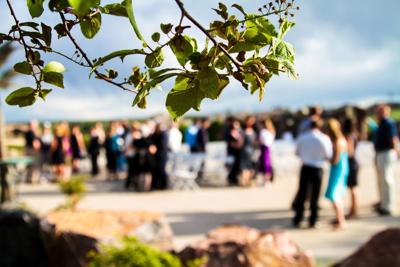 pelican-lakes-weddings-windsor-tomKphoto-062.jpg