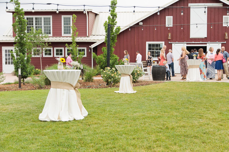 barn-at-raccoon-creek-wedding-photographer-027.jpg