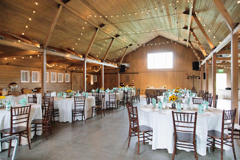 barn-at-raccoon-creek-wedding-photographer-029.jpg