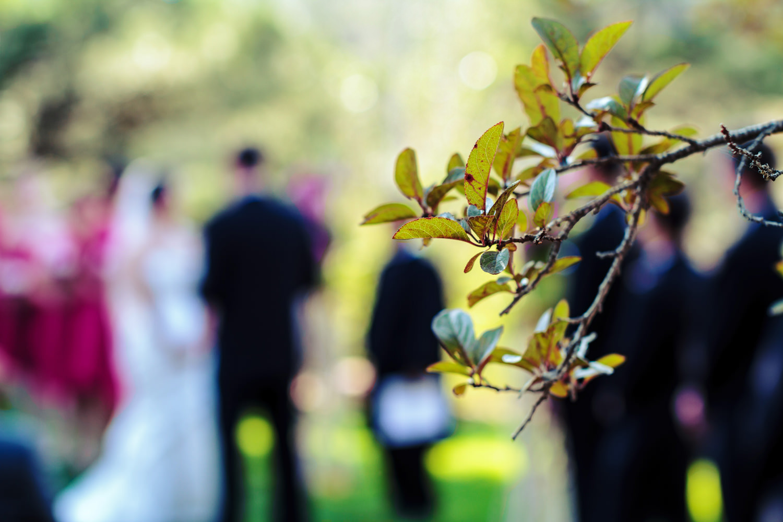 lionscrest-manor-wedding-photographer-tomKphoto-059.jpg