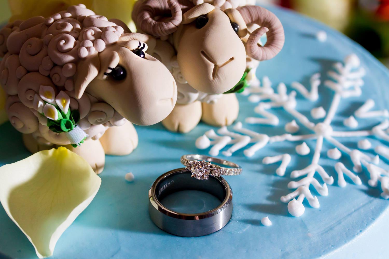 lionscrest-manor-wedding-photographer-tomKphoto-116.jpg