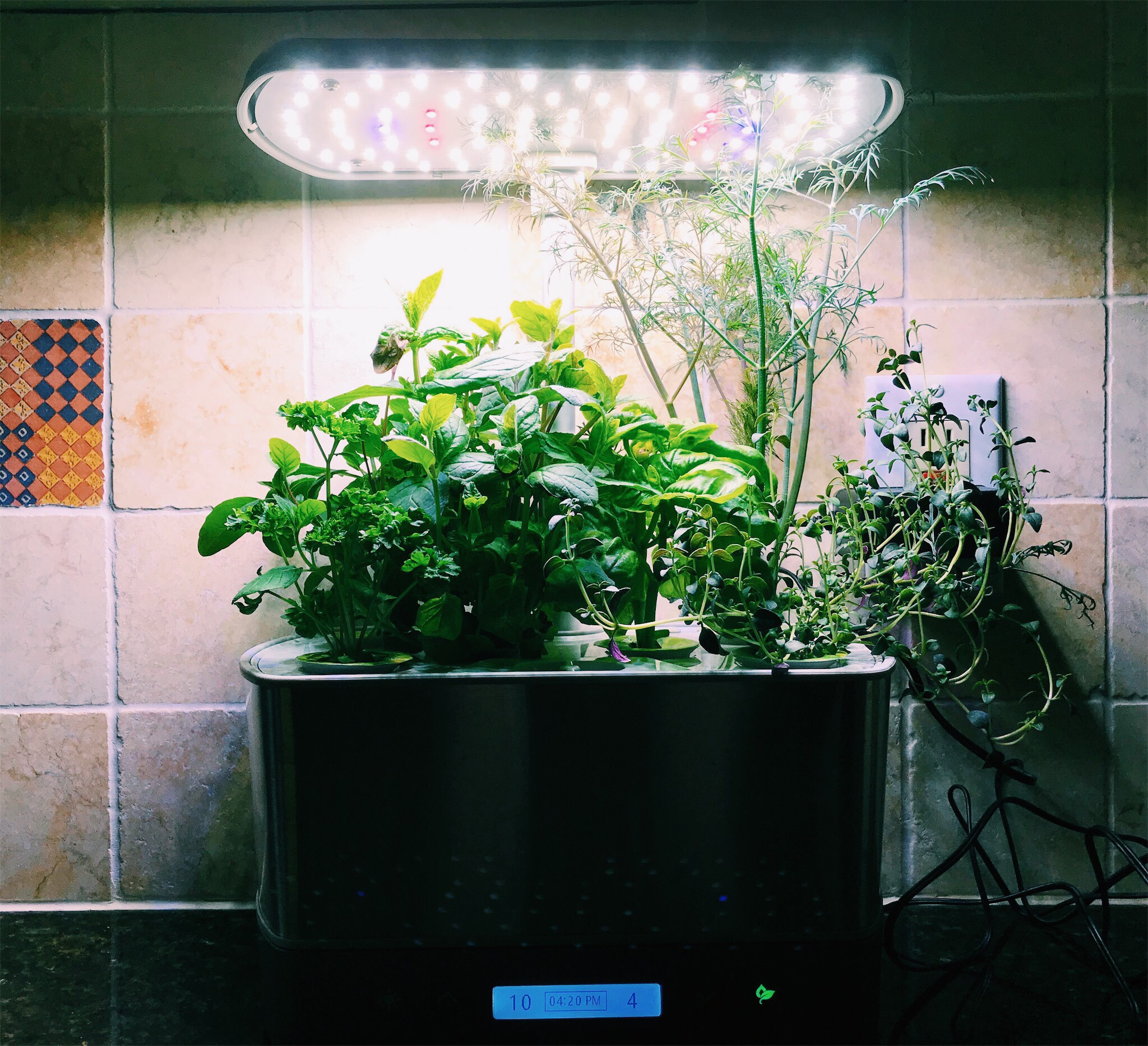 Miracle Grow Aero Garden