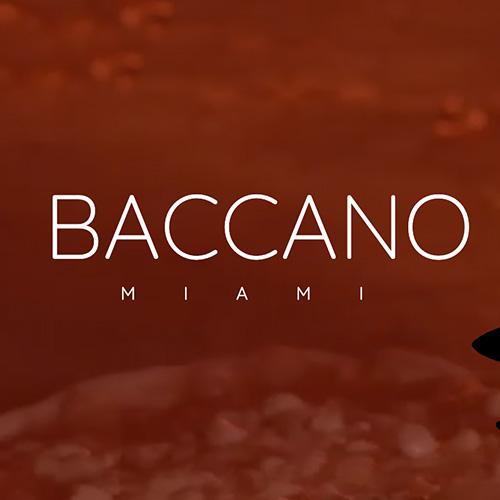 Minds_Partnerships_Logos_Baccano.jpg