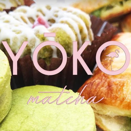 Minds_Partnerships_Logos_Yoko.jpg