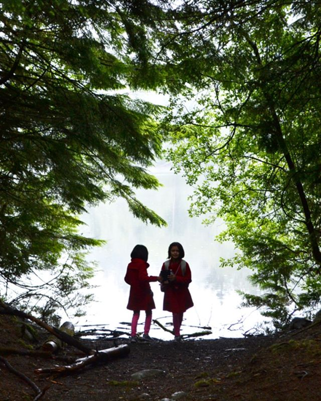 How do you cultivate wonder and curiosity with your young ones? Click the link in our bio to read about Tricia from @freshairlearningvancouver's thoughts on why questions are just as important as answers when you're outside in nature.