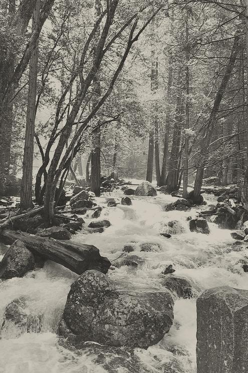 Yosemite1SOFT.jpg